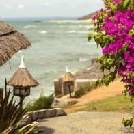Khu vườn nhiệt đới trước biển