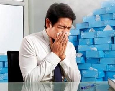 Biểu hiện và cách phòng tránh viêm mũi dị ứng