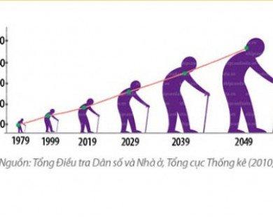 Chăm sóc người cao tuổi thế nào khi tốc độ già hóa nhanh?