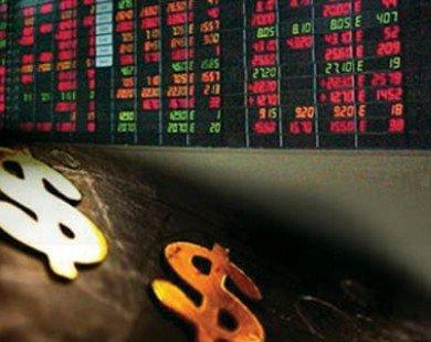 Cổ đông đăng ký mua lượng lớn cổ phiếu VNM, VSH