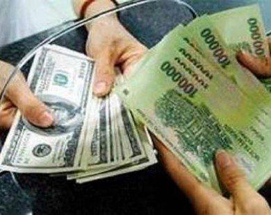 Hậu Giang: Tăng dư nợ 5 chương trình vay vốn ưu đãi