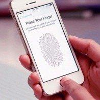 Apple thừa nhận iPhone 5s gặp lỗi về pin