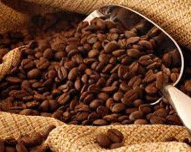 Xuất khẩu cà phê ước đạt 1,09 triệu tấn