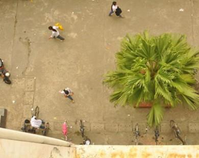 Nữ sinh rơi từ tầng 4 ĐH Thương mại xuống đất