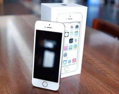 Vỏ hộp iPhone 5S Gold có giá 1,7 triệu đồng