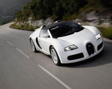 Bugati Veyron đọ sức xe Công thức 1