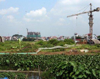 Hà Nội thu hồi gần 948ha đất sử dụng không hiệu quả
