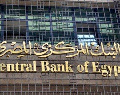 Ai Cập phong tỏa hơn 1.000 tài khoản ngân hàng NGO