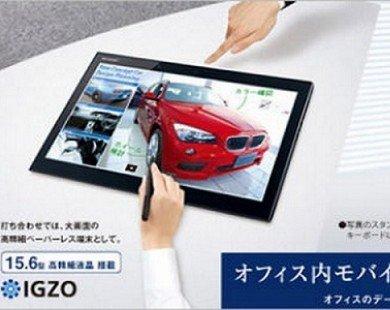 Sharp ra mắt máy tính bảng kích thước lớn tới 15,6-inch