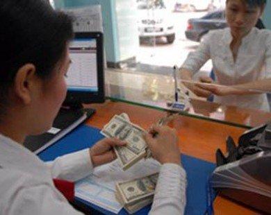 11 thủ tục hành chính trong lĩnh vực tiền tệ, ngoại hối