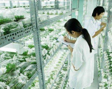 Doanh nghiệp Việt Nam tốt nghiệp trại huấn luyện công nghệ sạch