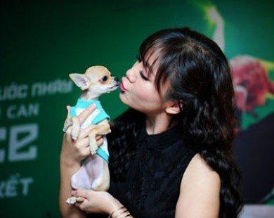 Văn Mai Hương lái xe chở cún cưng chạy show
