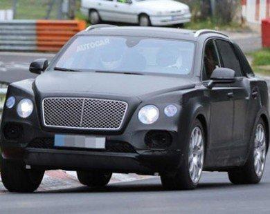 Bentley dự định sản xuất thêm SUV cỡ nhỏ