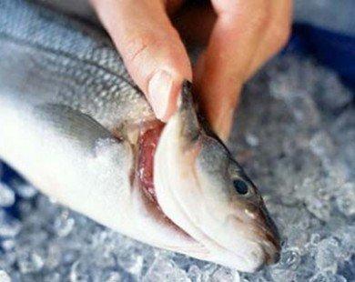 Cách nhận biết các loại hải sản bị tẩm ướp urê