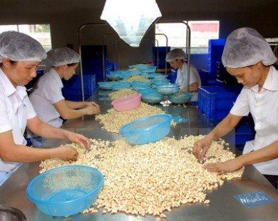 Kết nối doanh nghiệp Việt kiều để đa dạng hóa thị trường nông sản