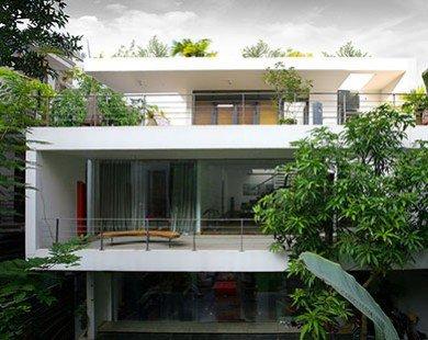 """""""Mướt mắt"""" với ngôi nhà phủ đầy cây xanh của nghệ sĩ nổi tiếng ở trung tâm Hà Nội"""