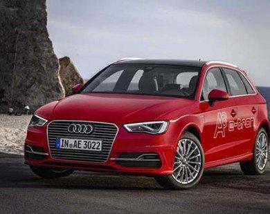 Mẫu xe điện đầu tiên của Audi sắp được phân phối ra thị trường