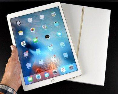iPad Pro chính hãng giá từ 20 triệu, bán ở VN đầu tháng 12