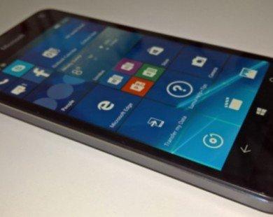 Xuất hiện ảnh thực tế của Lumia 650