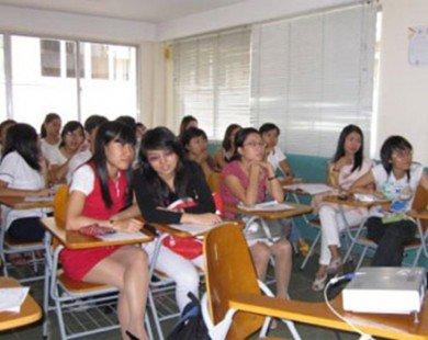 Việt Nam mong muốn OIF tiếp tục hỗ trợ tăng cường dạy học tiếng Pháp