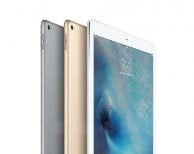 """Apple iPad 9,7 inch kế tiếp sẽ là """"biến thể"""" của iPad Pro"""