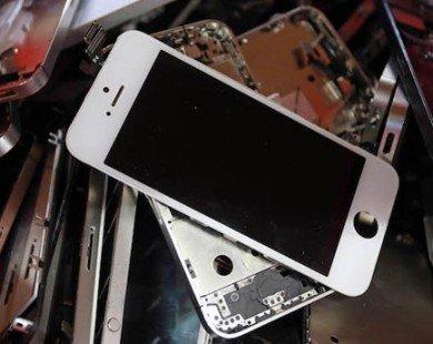 Apple thu một tấn vàng mỗi năm nhờ tái chế iPhone, MacBook