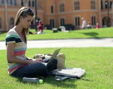 4 trường đại học an toàn nhất nước Mỹ