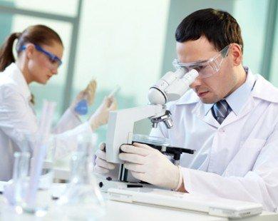 Dự án đào tạo các nhà nghiên cứu trẻ