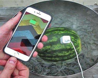 Điện thoại hết pin có thể sạc bằng trái dưa hấu