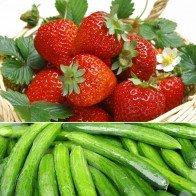4 bước rửa sạch thuốc trừ sâu trên bề mặt rau củ quả