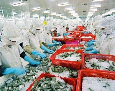 Tiếp tục tổ chức lại sản xuất trên biển
