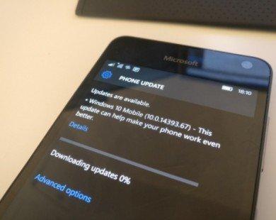 Bản cập nhật Windows 10 Mobile Anniversary chính thức 'lên sóng'