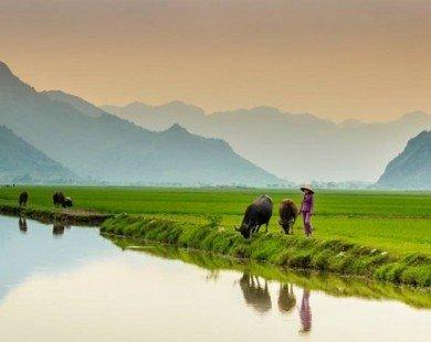 Vẻ bình dị tuyệt đẹp của cố đô Hoa Lư