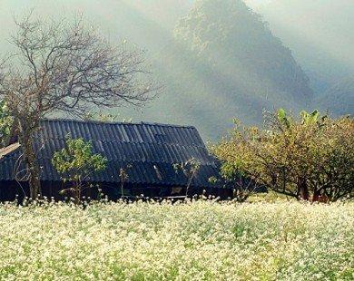 Mộc Châu – Những điểm nên đến