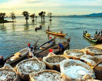 Ảnh: Vẻ đẹp mê hồn của Việt Nam nhìn từ chiều thẳng đứng