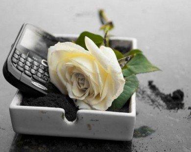 BlackBerry chính thức chấm dứt sản xuất điện thoại