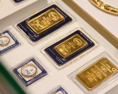 Giá vàng hôm nay tiếp tục tăng