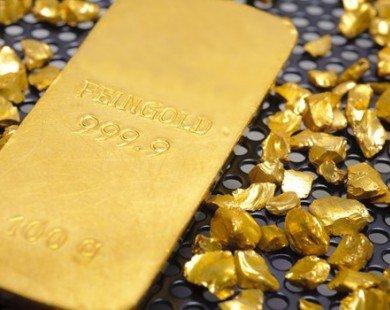 Giá vàng hôm nay tăng mạnh nhất trong 3 tuần