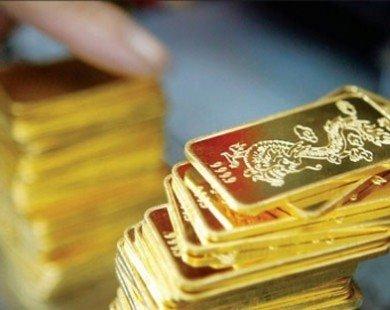 Giá vàng hôm nay đột ngột giảm mạnh