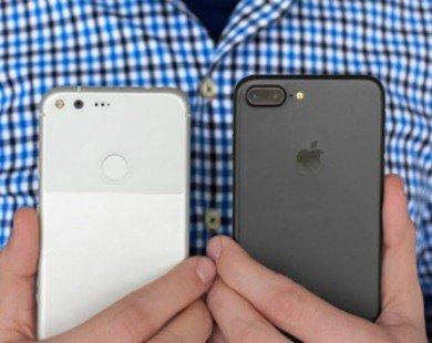 iPhone 7 Plus đọ sức cùng Google Pixel XL