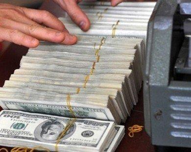 NHNN tiếp tục nâng tỷ giá trung tâm, USD ngân hàng được đẩy lên 22.450 đồng