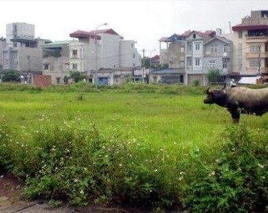 Hà Nội: Thu hồi đất không sử dụng quá 12 tháng