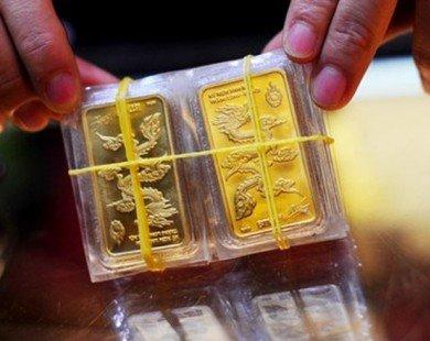 Vàng miếng tăng giá phiên thứ 3 liên tiếp