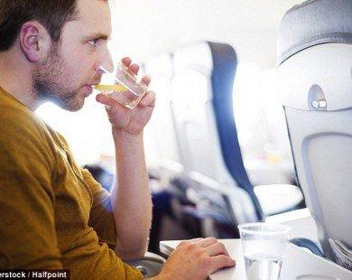 Bí quyết chọn món ăn ngon trên máy bay