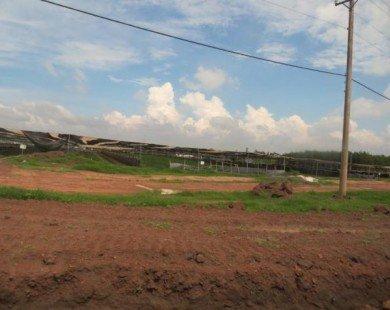 Nhà đầu tư Tp.HCM đổ về tỉnh săn đất nền giá rẻ