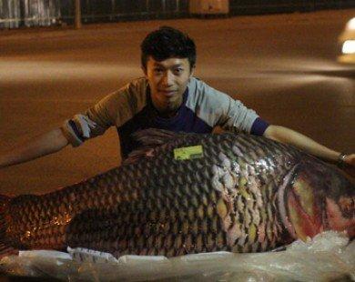 """Cá hô đỏ """"khủng"""" gần 100kg xuất hiện ở Hà Nội"""