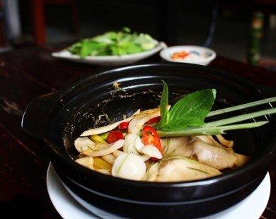 Nấu món chay trong 10 phút: Nấm đùi gà hấp Thái