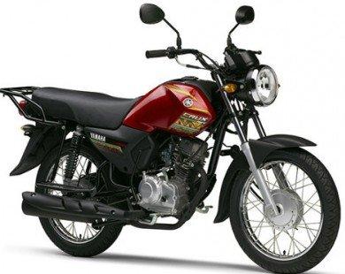 Yamaha Crux Rev: Xe côn 20 triệu đồng cho vùng quê