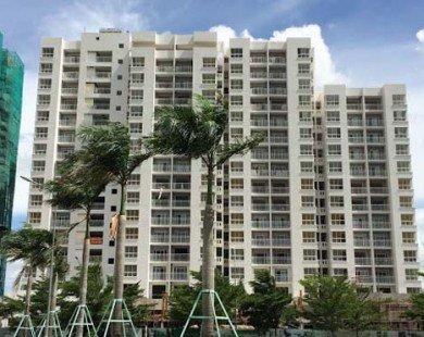 Hàng nghìn căn hộ nhà ở xã hội được bán trong năm 2017