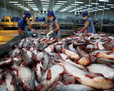 Người tiêu dùng có thể yên tâm về chất lượng cá tra Việt Nam